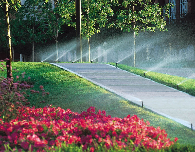 sprinklers on path landscaping